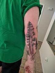 National Park Tattoo Sleeve