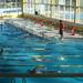 Febrero 2017 - Nadador Completo Promesas - Burgos