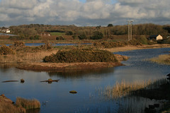 "Hayle Estuary RSPB - view towards Ryans field • <a style=""font-size:0.8em;"" href=""http://www.flickr.com/photos/30837261@N07/10723529235/"" target=""_blank"">View on Flickr</a>"