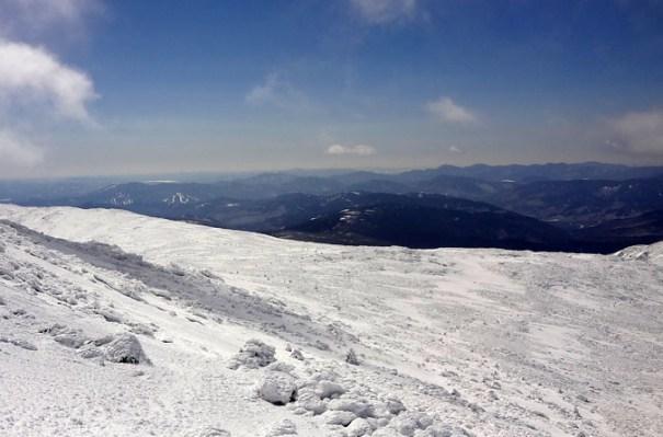 Winter Davis Path