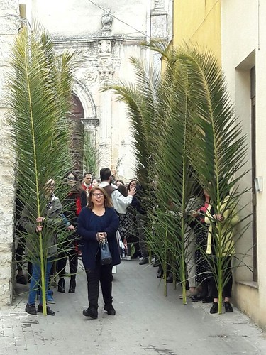Domenica palme 2017 (34)