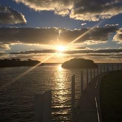 Paradise found #sunrise #nofilter #oceanreef
