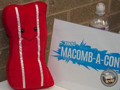 Macomb-A-Con 2017-17