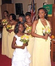 World' Of Bridesmaid - Hive Mind