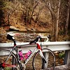 @cannondalepro @stravacycling #cycling West Virginia