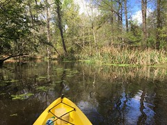Kayaking in Lake Pontchartrain, Louisiana