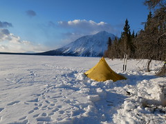 "Winter camping in Kluane national park • <a style=""font-size:0.8em;"" href=""http://www.flickr.com/photos/102036657@N06/33370728114/"" target=""_blank"">View on Flickr</a>"