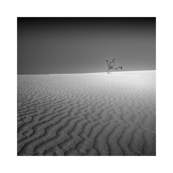 Dune Study I (All alone in the World) by Emmanuel Debrand