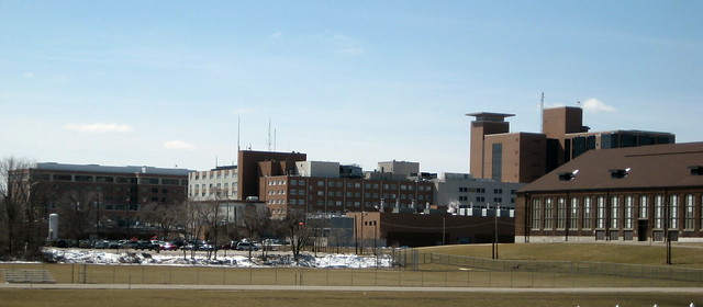 Sparrow Hospital  Flickr  Photo Sharing