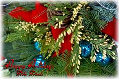 write warm holiday greetings