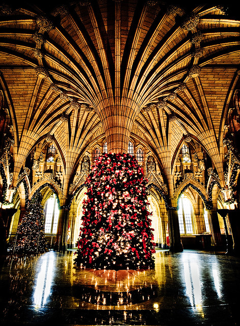 Christmas Tree At Parliament Hill Flickr Photo Sharing