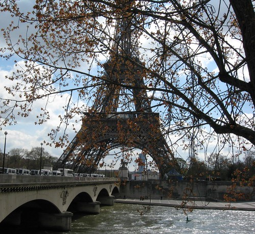 Tree in front of the Eiffel Tower
