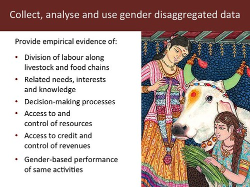Slide 15: 'Women and Livestock', 7 Mar 2014