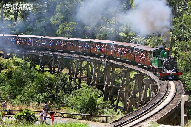 Puffing Billy Railway - 6A crossing Monbulk Trestle Bridge.