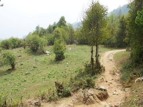 nepal 168