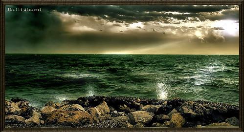 Rare moments by khalid almasoud