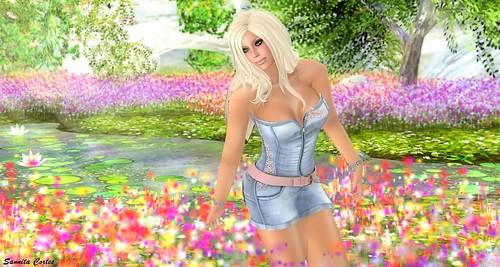 Spring greetings 1 (WLTB)