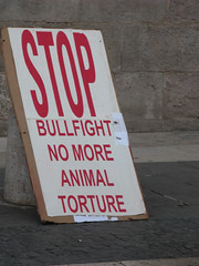 Anti-Bullfighting