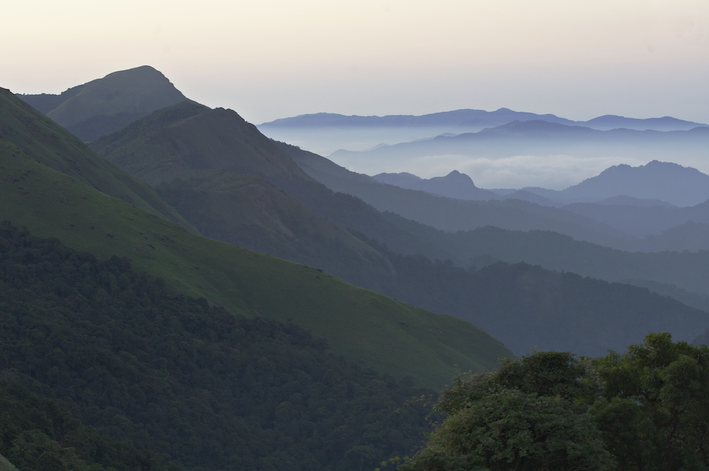 Morning view, Coorg, Karnataka