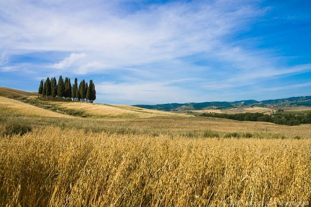 toscana  ITALIA  a gallery on Flickr