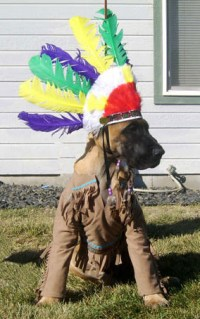 indian-dog-costume | Flickr - Photo Sharing!