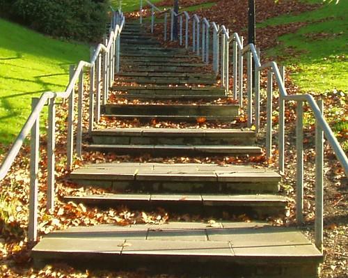 Steps, Bradford University