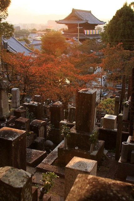 Sunset from Kyoto Graveyard