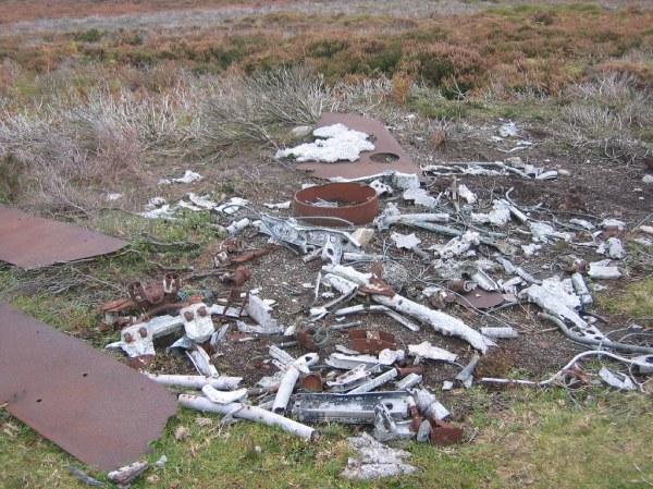 Lynyrd Skynyrd Plane Crash 84357 MOVIEWEB