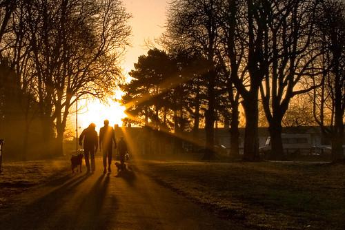 Dog Walking at Dawn by wentloog