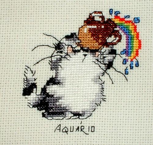 Aquarius - Aquário - 1 - 無料写真検索fotoq