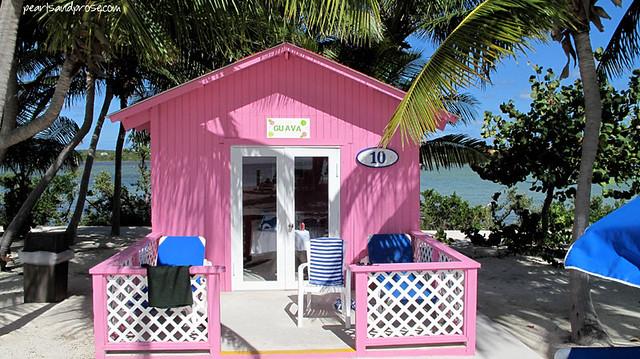 bahamas_pink_cab_web