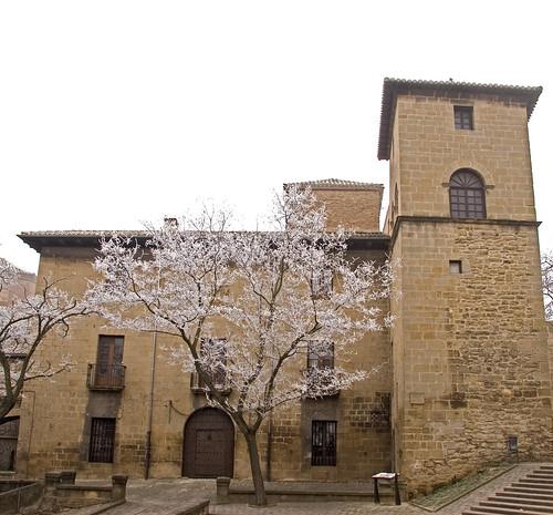 Casa Palacio de los Mencos, Tafalla
