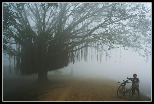 An Exotic & solitary Morning [..Chuadanga, Bangladesh..]