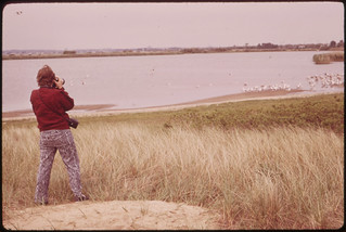 Photographer: Tress, Arthur