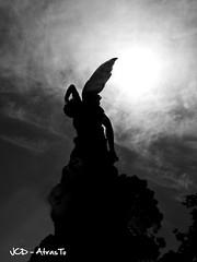 El Angel Caido - Ricardo Bellver (1877).