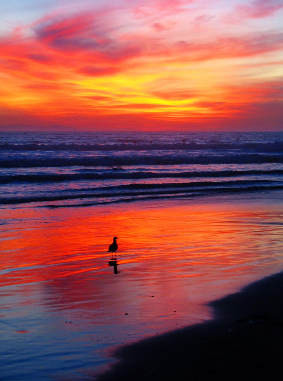 Sunset on Huntington Beach California Pacific Ocean