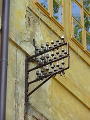 Památky a elektrická zařízení - Doksany