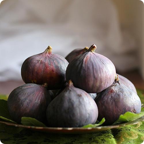 Michelangelo's Forbidden Fruit was a Fig