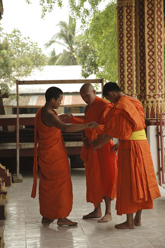 Putting on the new robe as a monk for the first time