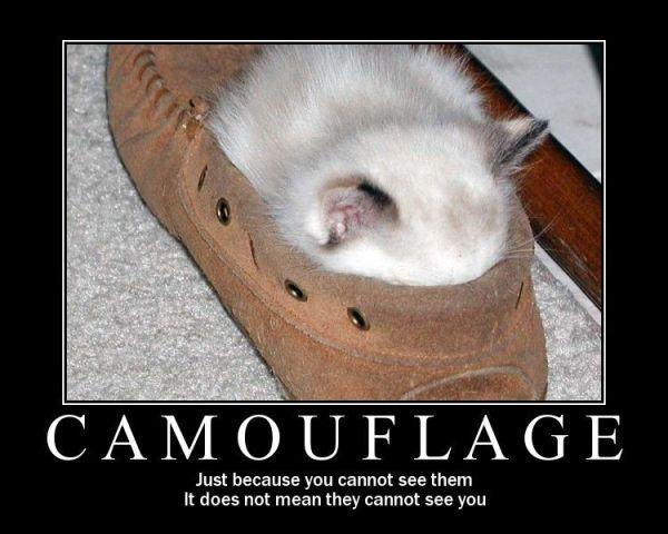 inspiration-camouglage