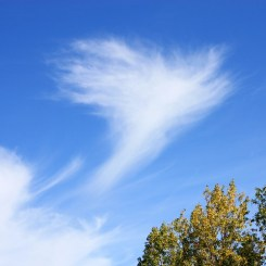 Angel Cloud