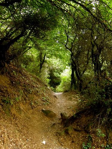 Hiking up from Kalambaka to Meteora