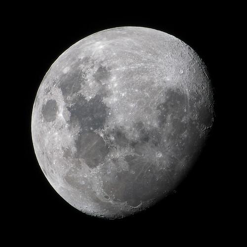 luna - waxing gibbous moon