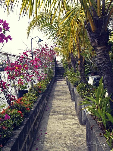 Seaside Haven walkway to back cottages