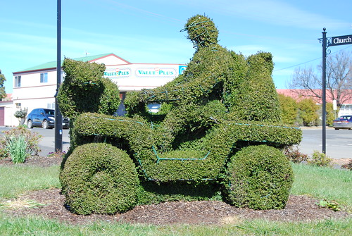Topiary tractor. by grumpypop51