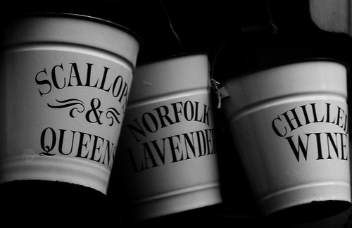 Portobello Buckets