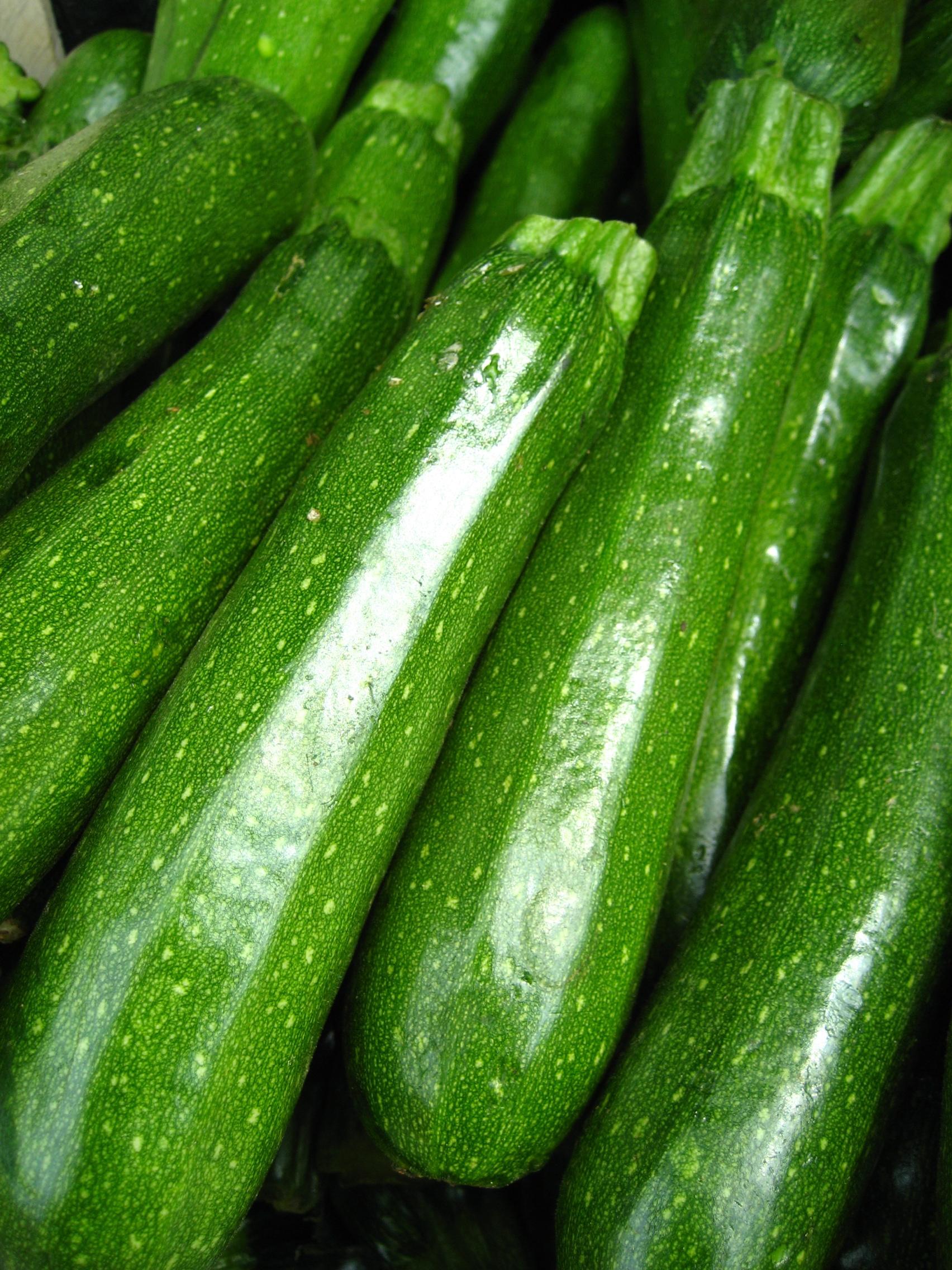 Zucchini Flickr Photo Sharing