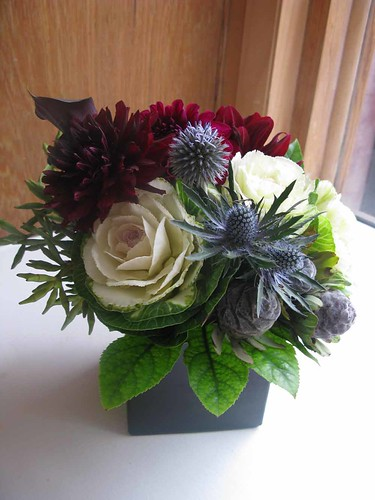 Wedding Flowers  Wholesale Blue Thistle