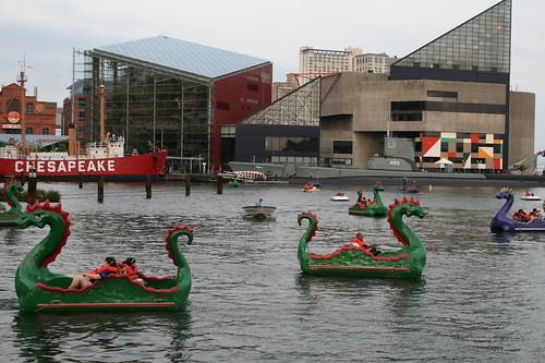 Baltimore Aquarium in background