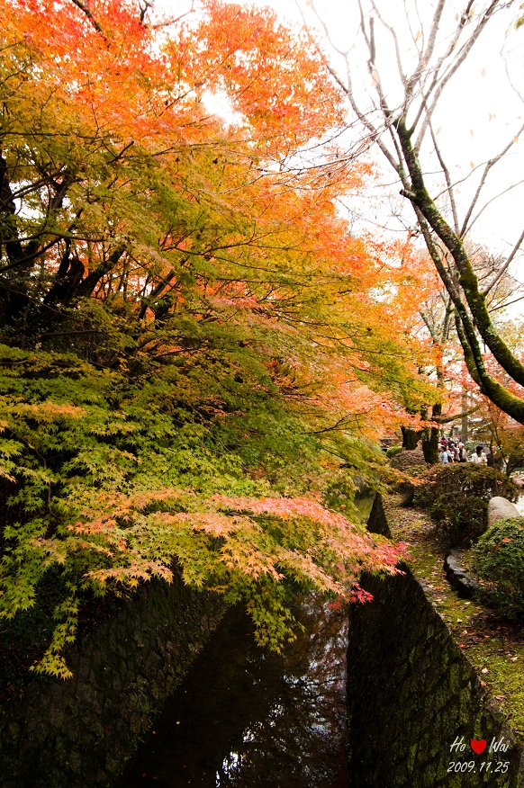 1125_kyoto_1156